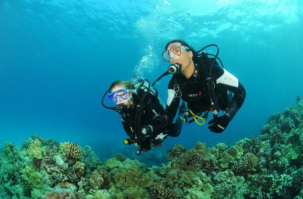 Central Coast Scuba Diving